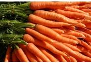 Салата Моркови